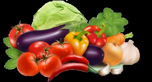 Купить овощи оптом