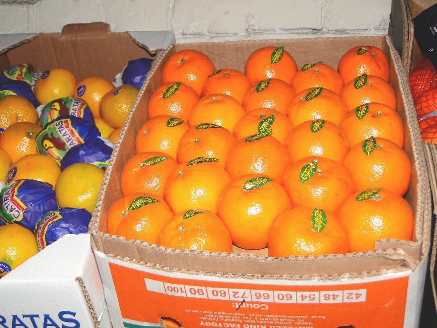 Купить фрукты оптом