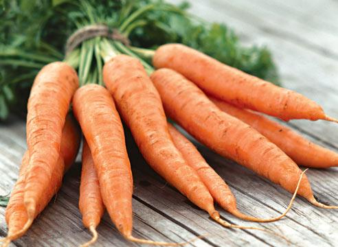 Купить овощи оптом в Казахстане