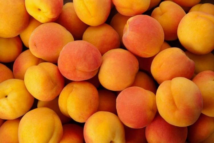 Покупка вяленых овощей и фруктов